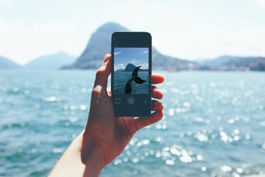 Mermaids on Instgram on a phone that is held in front of the ocean