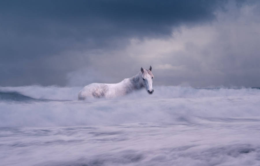 a water spirit in the form of a horse